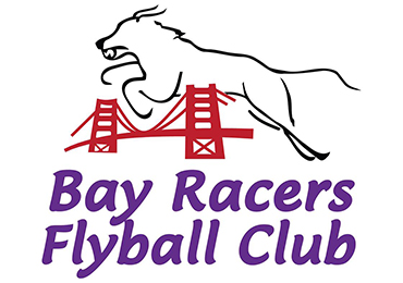Bay Racers Flyball