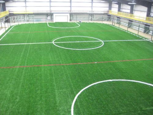 3rd floor field.jpg